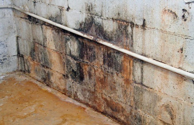 Orange County Mold Residential